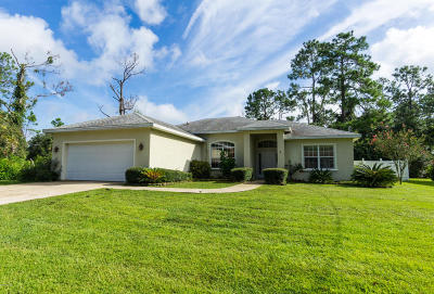 Palm Coast Single Family Home For Sale: 9 Rodger Place