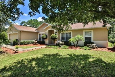 Palm Coast Single Family Home For Sale: 37 Ryan Drive