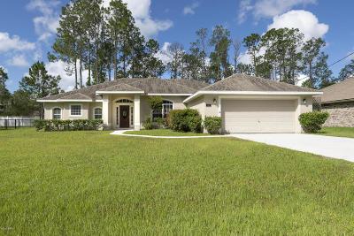 Palm Coast Single Family Home For Sale: 36 Richfield Lane