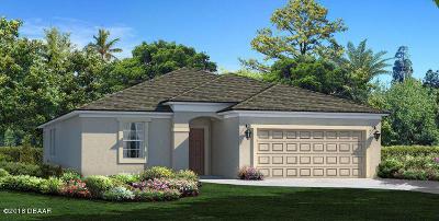 Hunters Ridge Single Family Home For Sale: 18 Huntington Place