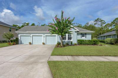 Hunters Ridge Single Family Home For Sale: 69 Abacus Avenue