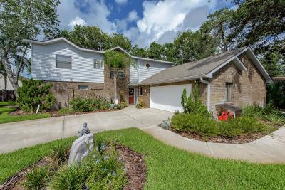 Ormond Beach Single Family Home For Sale: 11 Sycamore Circle