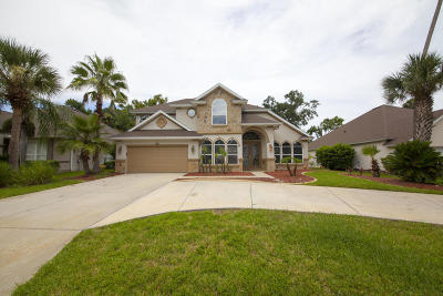 Ormond Beach Single Family Home For Sale: 7 Lionshead Drive