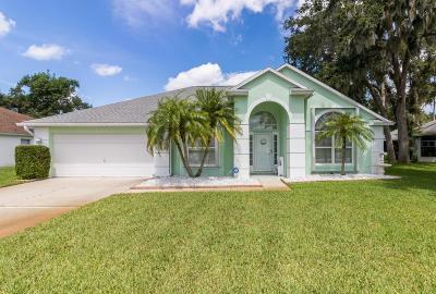 Daytona Beach Single Family Home For Sale: 220 Hollowbrook Circle