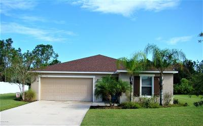 Daytona Beach Single Family Home For Sale: 108 Mulberry Branch Court