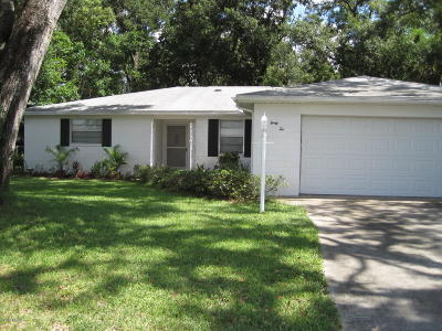 Ormond Beach Single Family Home For Sale: 42 Alanwood Drive
