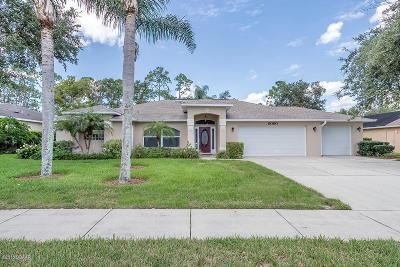 Port Orange Single Family Home For Sale: 6090 Pheasant Ridge Drive