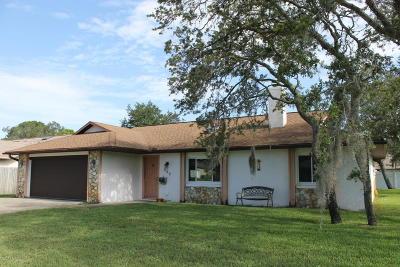 Port Orange Single Family Home For Sale: 995 Sandle Wood Drive