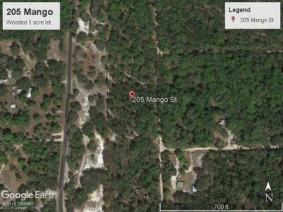 Residential Lots & Land For Sale: 205 Mango Street