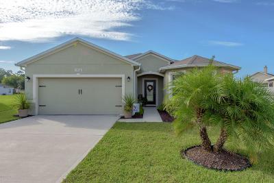 Port Orange Single Family Home For Sale: 1710 Savannah Lane