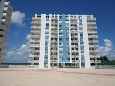 Daytona Beach Condo/Townhouse For Sale: 935 N Halifax Avenue #206
