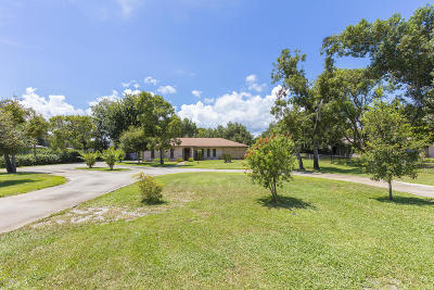Port Orange Single Family Home For Sale: 5831 Boggs Ford Road