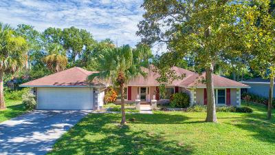 Ormond Beach Single Family Home For Sale: 13 Sandcastle Drive