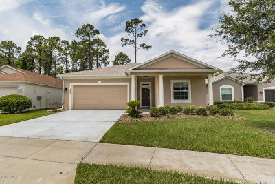 Daytona Beach Single Family Home For Sale: 357 Dahoon Holly Drive