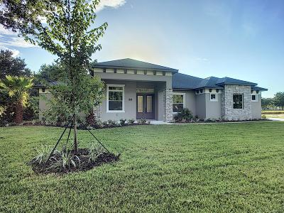 New Smyrna Beach Single Family Home For Sale: 441 Sweet Bay Avenue