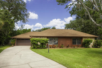 Port Orange Single Family Home For Sale: 6200 Yellowstone Drive