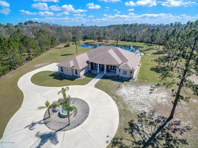 Port Orange Single Family Home For Sale: 2595 Echo Farms Drive