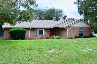 Deltona  Single Family Home For Sale: 601 N Goodrich Drive