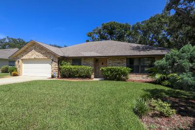 Ormond Beach Single Family Home For Sale: 1523 Poplar Drive