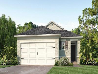 New Smyrna Beach Single Family Home For Sale: 2924 Taton Trace