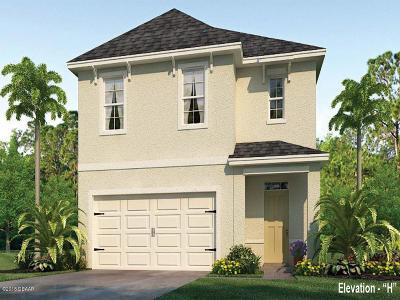 New Smyrna Beach Single Family Home For Sale: 2812 Blue Shores Way