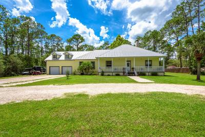 Ormond Beach Single Family Home For Sale: 262 E Woodhaven Circle