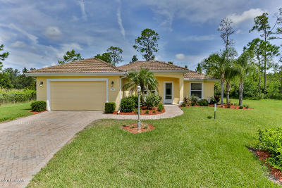 Ormond Beach Single Family Home For Sale: 19 Willoughby Trace