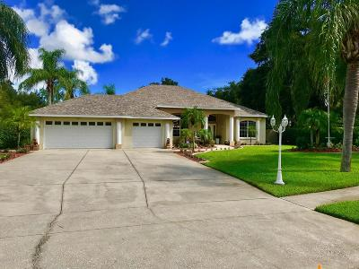 Port Orange Single Family Home For Sale: 6091 Summerlake Drive