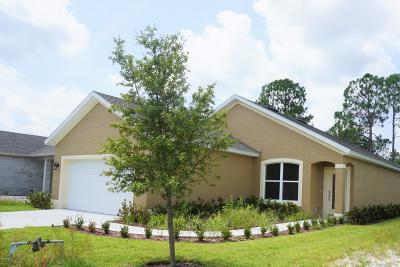 Daytona Beach Single Family Home For Sale: 218 Catriona Drive
