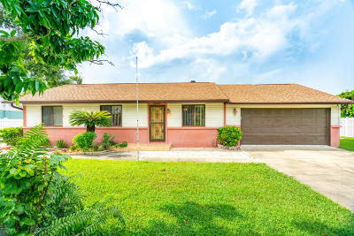 New Smyrna Beach Single Family Home For Sale: 104 North Street