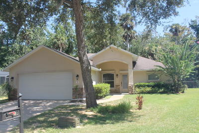 Ormond Beach Single Family Home For Sale: 41 Wild Cat Lane