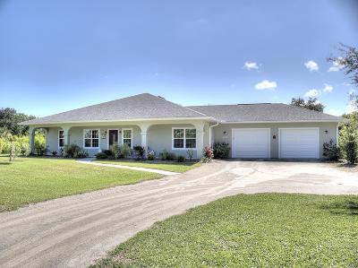 New Smyrna Beach Single Family Home For Sale: 601 Bay Drive