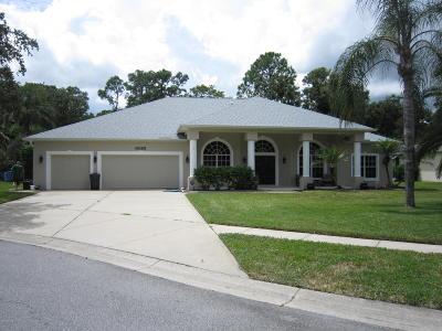 Port Orange Single Family Home For Sale: 6085 Sabal Creek Boulevard