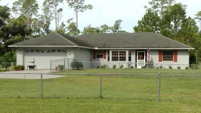 New Smyrna Beach Single Family Home For Sale: 352 Canal Road