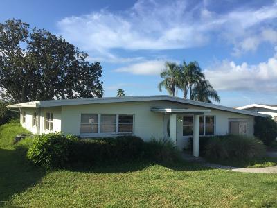 New Smyrna Beach Single Family Home For Sale: 37 Richmond Drive