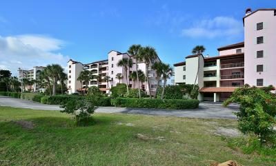 Daytona Beach Condo/Townhouse For Sale: 645 Marina Point Drive #6450