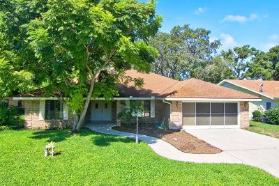 Spruce Creek Fly In Single Family Home For Sale: 63 Lazy Eight Drive