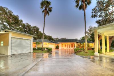 Port Orange Single Family Home For Sale: 6007 S Williamson Boulevard