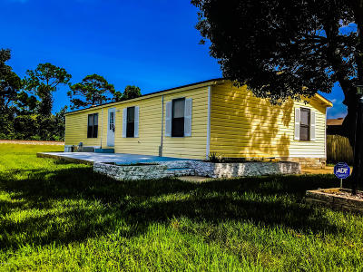 Port Orange Single Family Home For Sale: 5637 Wood Street