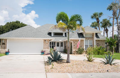 Port Orange Single Family Home For Sale: 807 Smokerise Boulevard