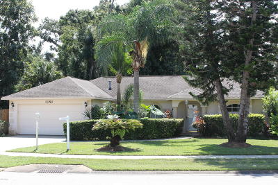 Port Orange Single Family Home For Sale: 1154 Silver Creek Run