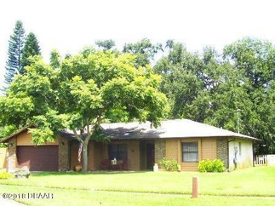 Port Orange Single Family Home For Sale: 3483 Country Walk Drive