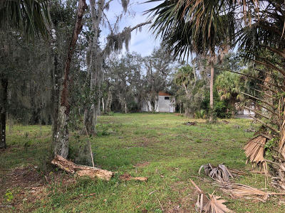 Volusia County Residential Lots & Land For Sale: 5817 Boggs Ford Road