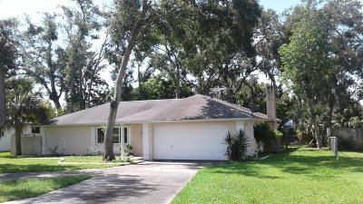 Ormond Beach Single Family Home For Sale: 114 Cuadro Place