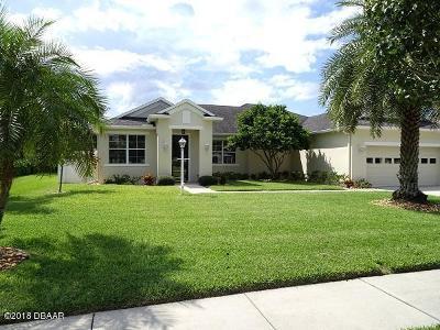 New Smyrna Beach Single Family Home For Sale: 730 Grape Ivy Lane