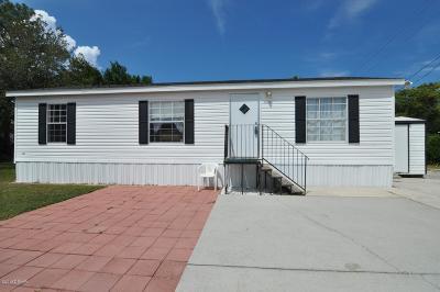 Port Orange Single Family Home For Sale: 5261 Pineland Avenue