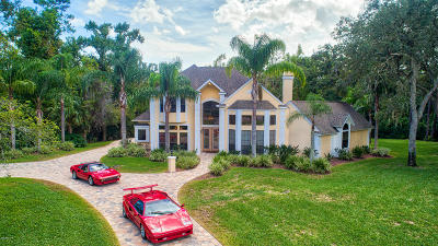 Ormond Beach Single Family Home For Sale: 5 Creek View Way