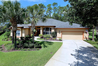 Ormond Beach Single Family Home For Sale: 608 Moss Creek Drive