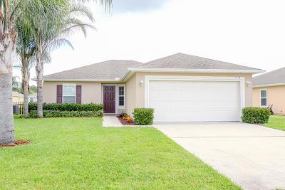 Port Orange Single Family Home For Sale: 5339 Royal Plantation Boulevard