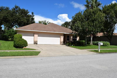 New Smyrna Beach Single Family Home For Sale: 1817 Turnbull Lakes Drive